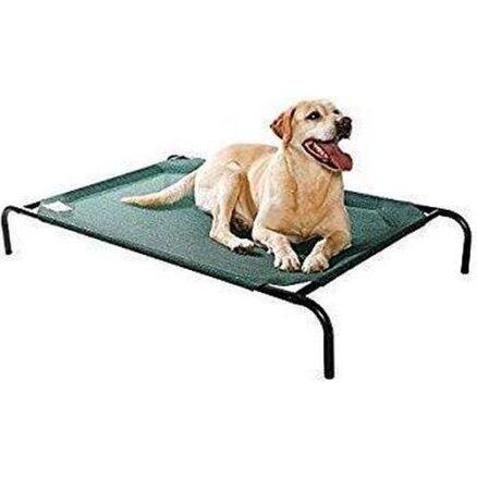 Groen hondenligbed