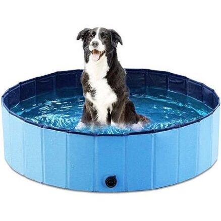 Honden- of kattenzwembad
